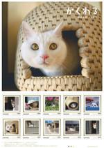 Iwagou_cat